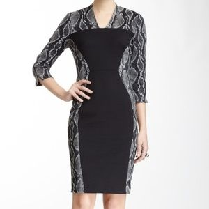 French Connection Black Snakeskin Printed Dress